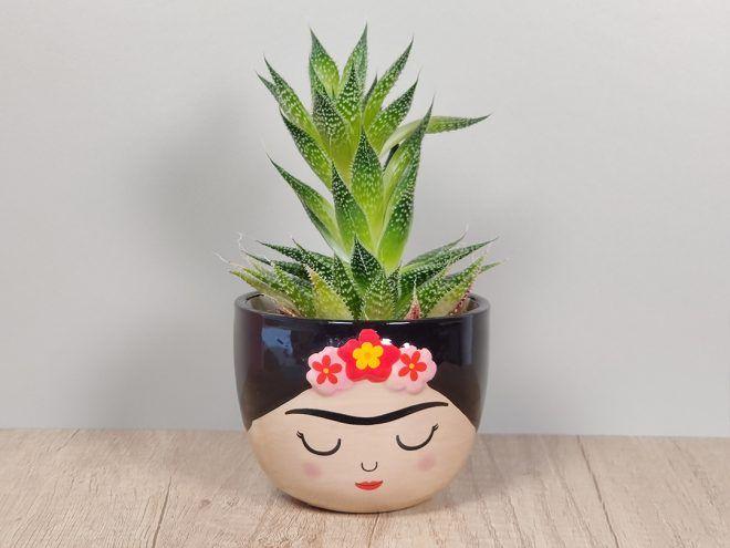 Minighiveci Frida